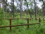 Leśna stajnia Lubiatówka