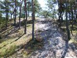 Ostrowo, grórka w lesie