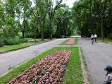 Alejka z kwiatami w Parku Skaryszewskim, w kierunku ronda Waszyngtona