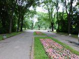 Alejka z kwiatami w Parku Skaryszewskim