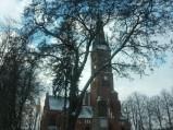 Kościół parafialny p.w. Najświętszego Zbawiciela w Rykach