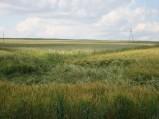 Widok na Górę Kumowską