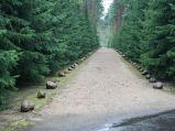 Ścieżka, z kamieniami