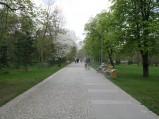 Aleja w Parku Zdrojowym w Konstancinie-Jeziornej