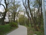 Chodnik przy Tężni w Parku Zdrojowym w Konstancinie-Jeziornej