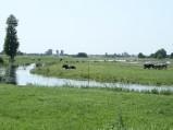 Podniesiony poziom wody w Mogilance