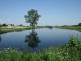 Jezioro na łąkach utworzone przez Mogilankę