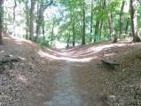 Droga na Wzgórze Pachołek