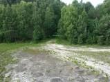 Widok w kierunku lasu w Ostrowie