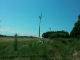 Pole z wiatrakami w Skarszewie