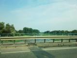 Rzeka Bzura w Sochaczewie
