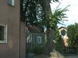 Kapliczka w Spiczynie