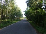 Droga przy strzelnicy w Borowicy