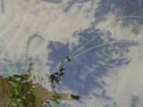 Sumiki pływające obok pomostu, Jezioro Rotcze