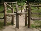Przejście dla koni w hodowli konika polskiego