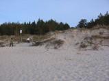 Plaża w Karwii