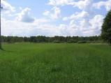 Polana szlak czerwony na Spławy, po lewej stronie w kierunku Zawadówki