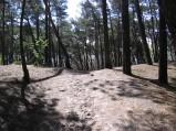 Wejście na górkę w lesie między ulicą w Karwi a plażą