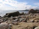 Wybrzeże klifowe w Gdyni, w tle molo w Gdyni Orłowie
