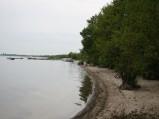 Plaża Lubkowo, jezioro Żarnowieckie