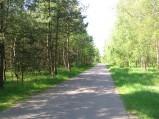 Droga do Osówki, dojazd do drogi nr 10