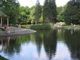 Staw w Parku Ujazdwskim
