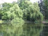 Park Ujazdowski, Staw
