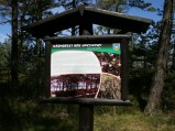 Tablica informacyjna w lesie w Lubiatowie, przy plaży