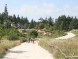 Droga do kamieniołomu józefowskiego