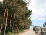 Droga do wejśćia nr 1 na plażę we Władysławowie