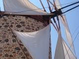 Skrzydła wiatrak, AAtimachia