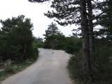 Ścieżka na Vidowej Górze, Bol
