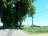 Wjazd do Alei Drzew w Brzemionach