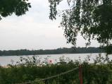 Plaża i wędkarze na Jeziorze Firlej