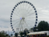 Koło Widokowe w Gdyni