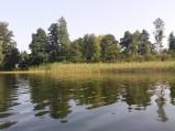 Trzciny na prawo od kąpieliska Jezioro Rotcze