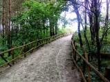 Wejście nr 6 Karwieńskie Błota