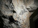 Skały w jaskini na Kadzielni w Kielcach
