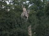 Pomnik Kościuszki w Końskich