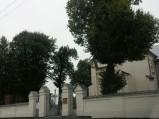 Brama i mury przy kościele w Milejowie