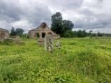 Ruiny starej walcowni w Nietulisku Dużym