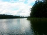 Jezioro Wągiel, Ostrów Pieckowski