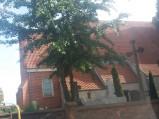 Kościół p.w. św. Mikołaja, Papowo Toruńskie