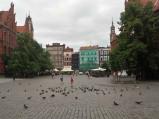 Gołębie, Rynek Staromiejski, Toruń