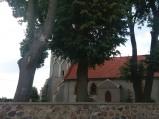 Nawa, kościoła św. Michała Archanioła, Uzdowo