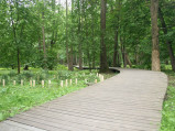 Kładki nad terenem podmokłym w parku w Wejherowie