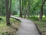 Kładki w parku w Wejherowie