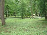 Kładki w parku miejskim w Wejherowie
