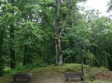 Placyk, Kalwaria w Wejherowie