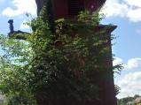 Dzwonnica kościoła w Wereszczynie